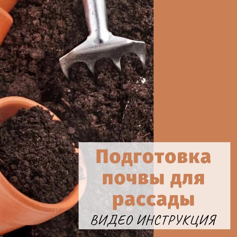 почва брикеты для рассады